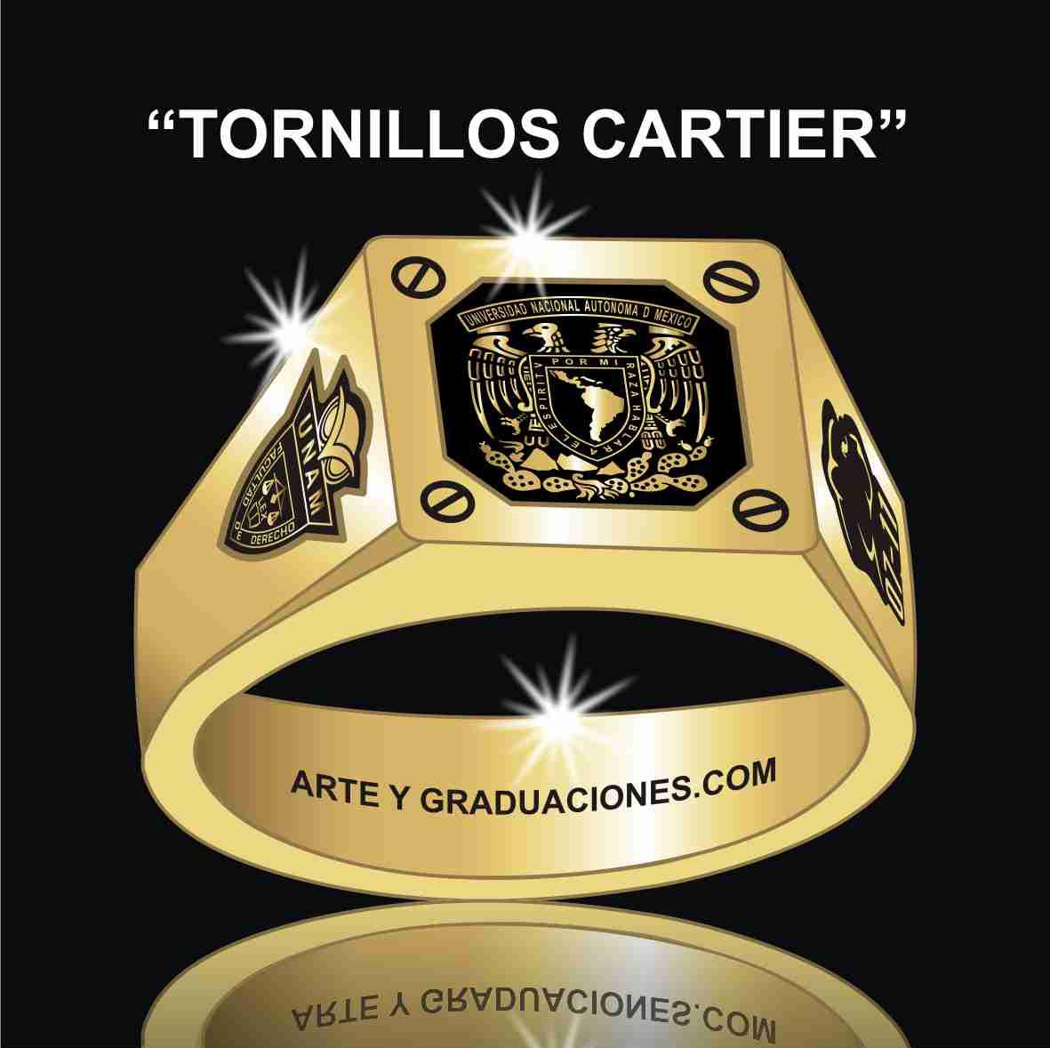 Rings On Pinterest Class Ring Halo Diamond And Diamond